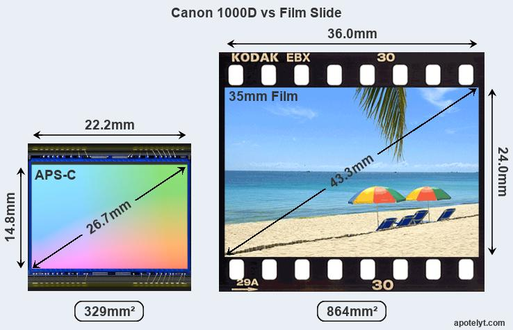 Canon 1000D Comparison Review