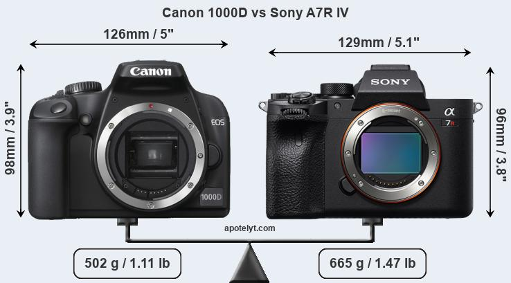 Size Canon 1000D vs Sony A7R IV