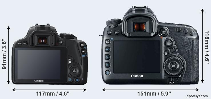 100D and 5D Mark IV rear side