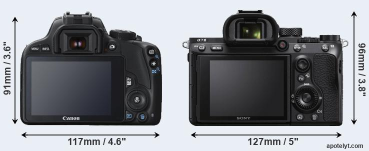 100D and A7 III rear side