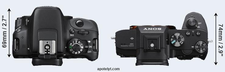 100D versus A7 III top view