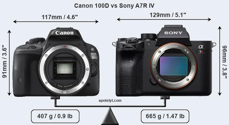 Size Canon 100D vs Sony A7R IV