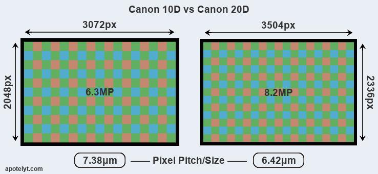 Canon 10D vs Canon 20D Comparison Review