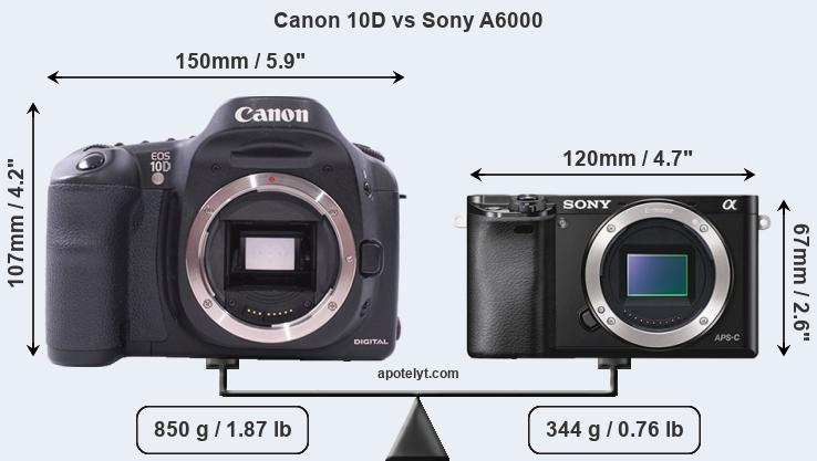 Size Canon 10D vs Sony A6000