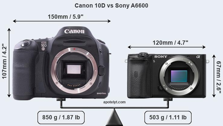 Size Canon 10D vs Sony A6600