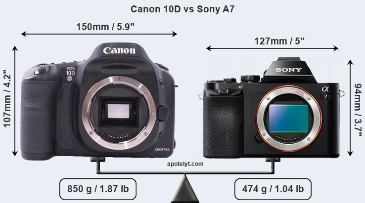 Size Canon 10D vs Sony A7