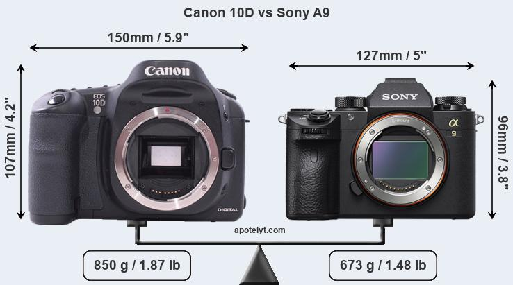 Size Canon 10D vs Sony A9