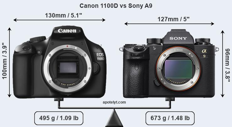 Size Canon 1100D vs Sony A9