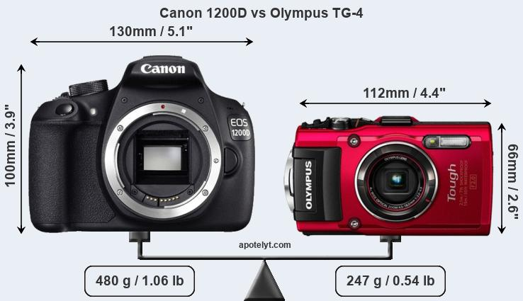 Size Canon 1200D vs Olympus TG-4