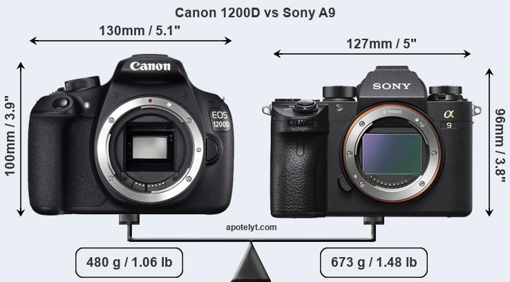 Size Canon 1200D vs Sony A9