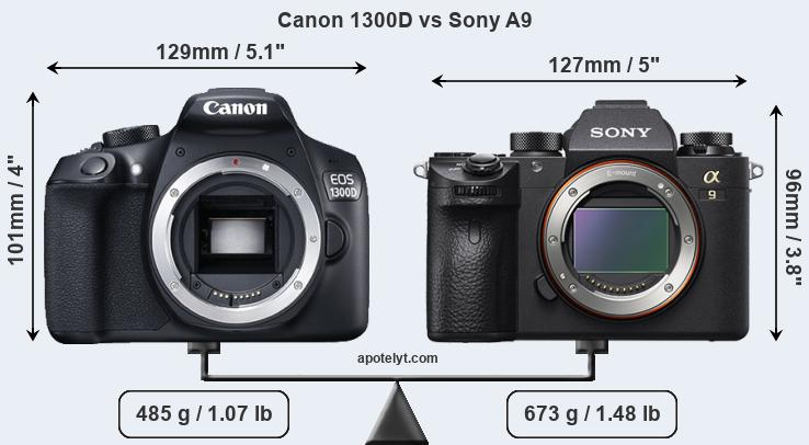 Size Canon 1300D vs Sony A9