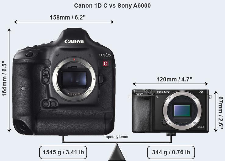 Size Canon 1D C vs Sony A6000