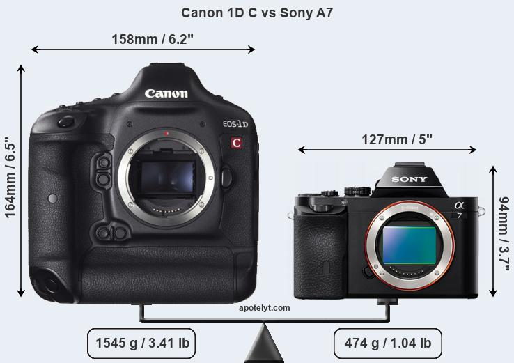 Size Canon 1D C vs Sony A7