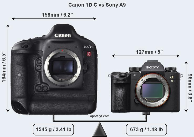 Size Canon 1D C vs Sony A9