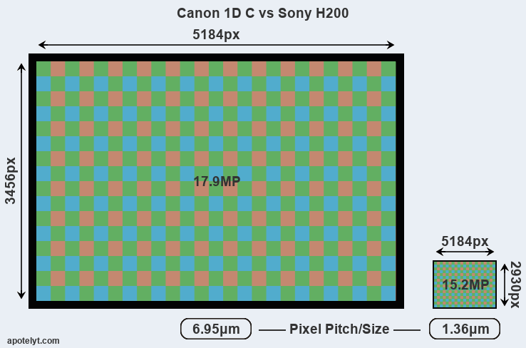 Canon 1D C vs Sony H200 Comparison Review