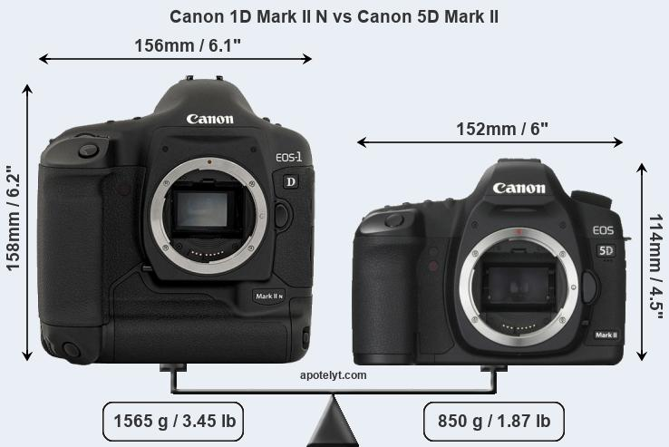 Size Canon 1D Mark II N vs Canon 5D Mark II