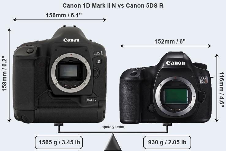 Size Canon 1D Mark II N vs Canon 5DS R
