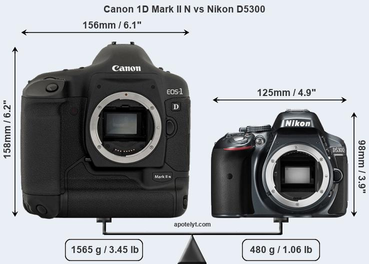 Size Canon 1D Mark II N vs Nikon D5300