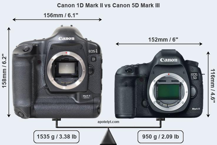 Size Canon 1D Mark II vs Canon 5D Mark III
