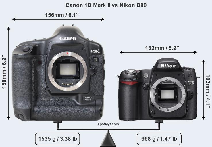 Size Canon 1D Mark II vs Nikon D80