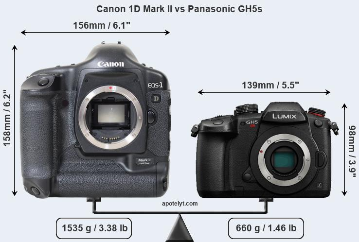 Snapsort Canon 1D Mark II vs Panasonic GH5s