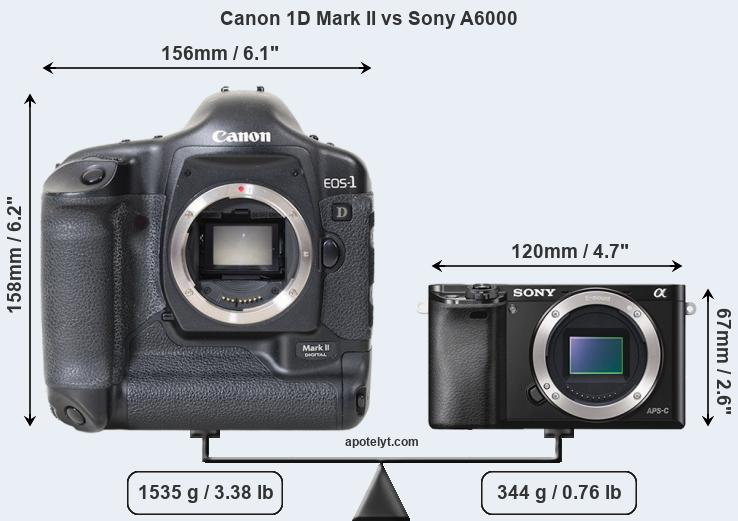 Size Canon 1D Mark II vs Sony A6000