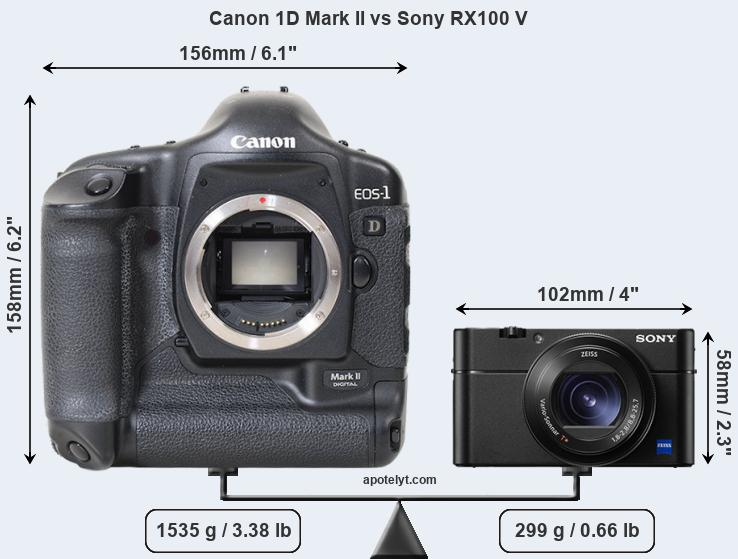 Size Canon 1D Mark II vs Sony RX100 V