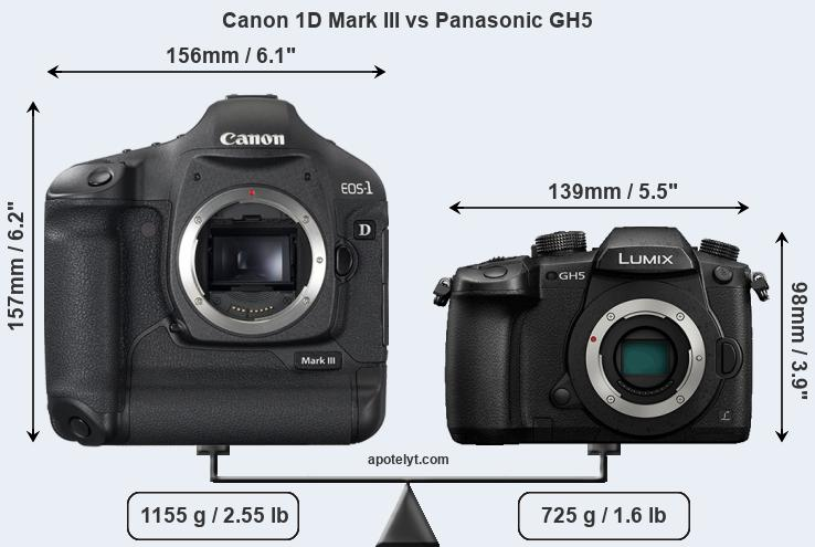 Size Canon 1D Mark III vs Panasonic GH5