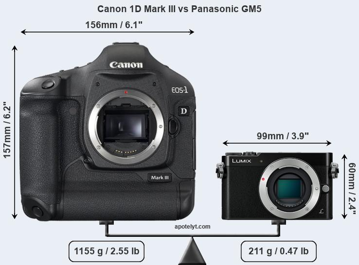 Size Canon 1D Mark III vs Panasonic GM5