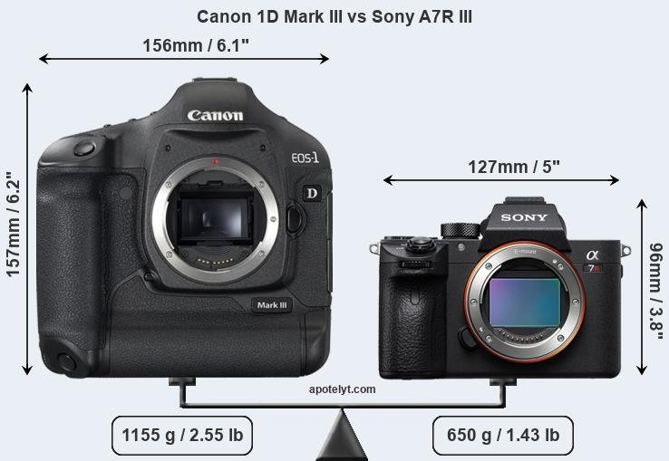 Size Canon 1D Mark III vs Sony A7R III