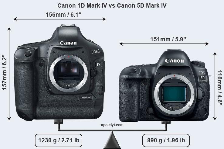 Size Canon 1D Mark IV vs Canon 5D Mark IV