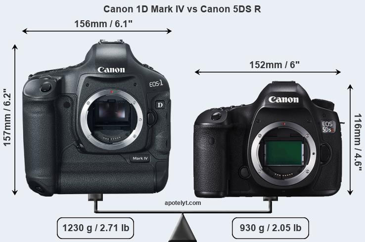 Size Canon 1D Mark IV vs Canon 5DS R