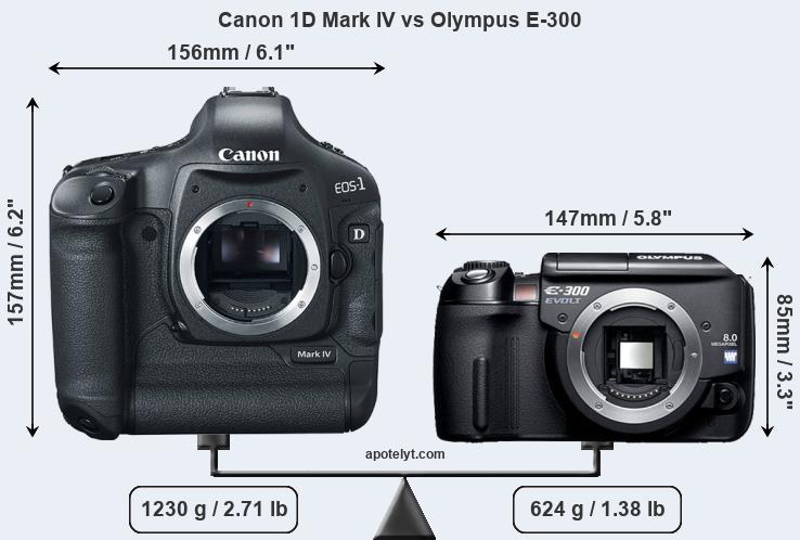 Size Canon 1D Mark IV vs Olympus E-300