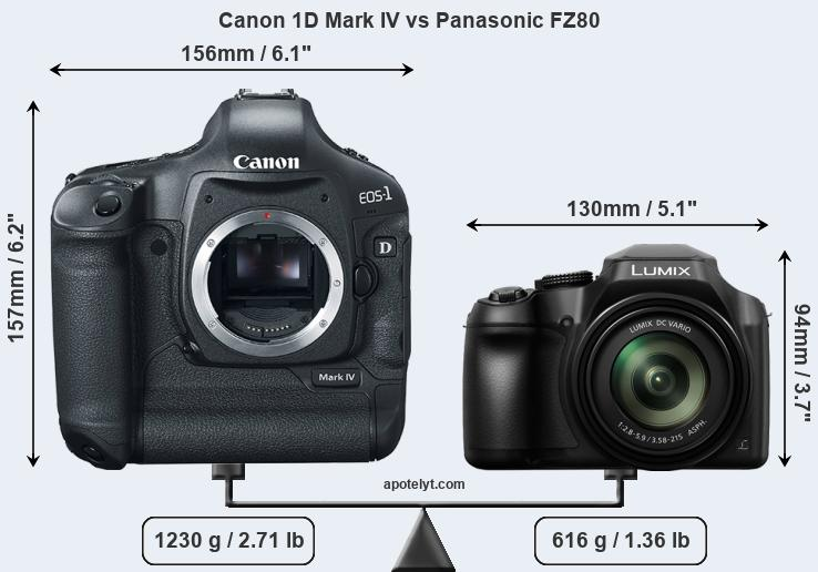 Size Canon 1D Mark IV vs Panasonic FZ80