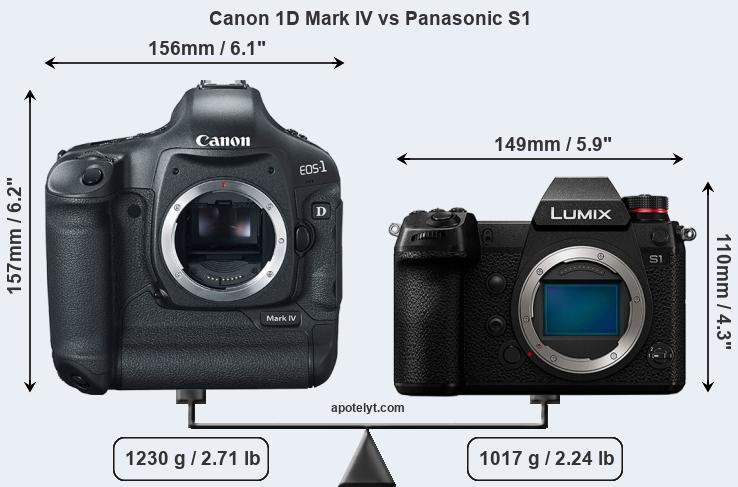 Size Canon 1D Mark IV vs Panasonic S1