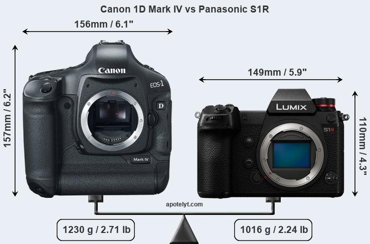 Size Canon 1D Mark IV vs Panasonic S1R