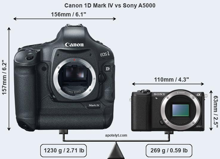 Size Canon 1D Mark IV vs Sony A5000