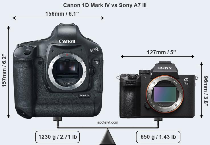 Size Canon 1D Mark IV vs Sony A7 III
