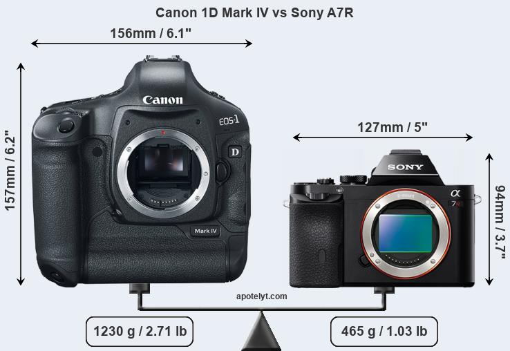 Size Canon 1D Mark IV vs Sony A7R