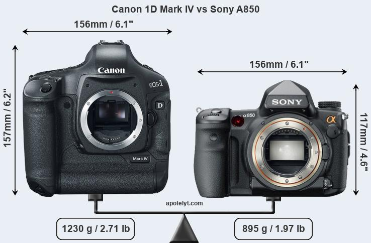 Size Canon 1D Mark IV vs Sony A850