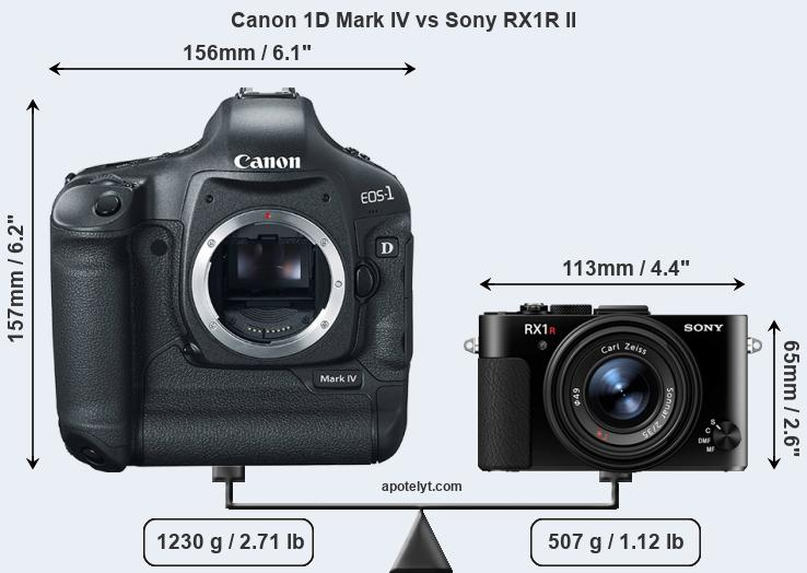 Size Canon 1D Mark IV vs Sony RX1R II