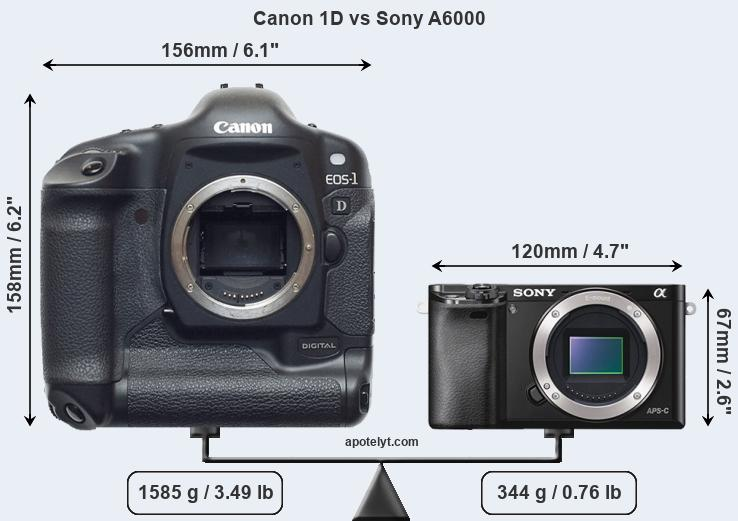 Compare Canon 1D and Sony A6000