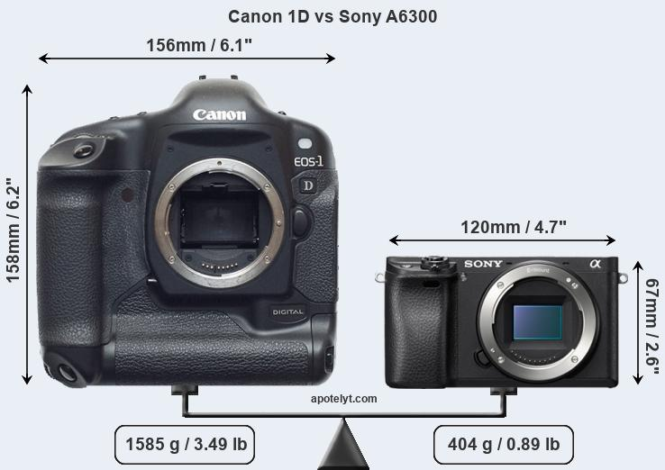 Size Canon 1D vs Sony A6300