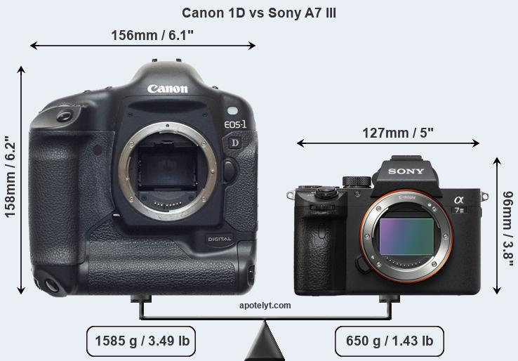Size Canon 1D vs Sony A7 III