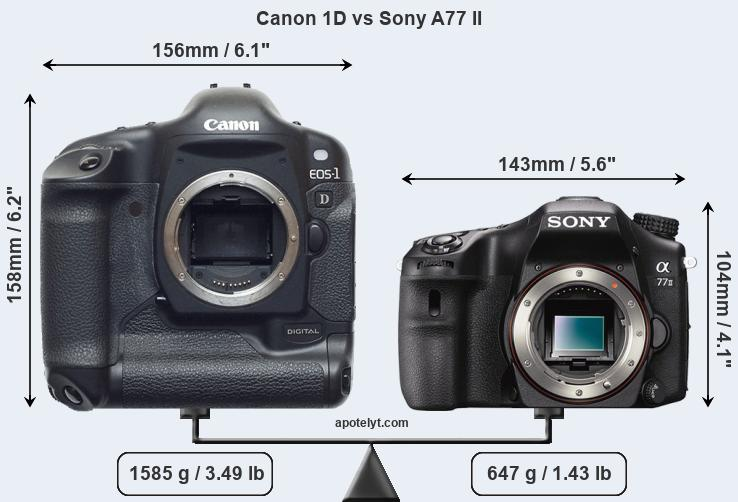 Size Canon 1D vs Sony A77 II