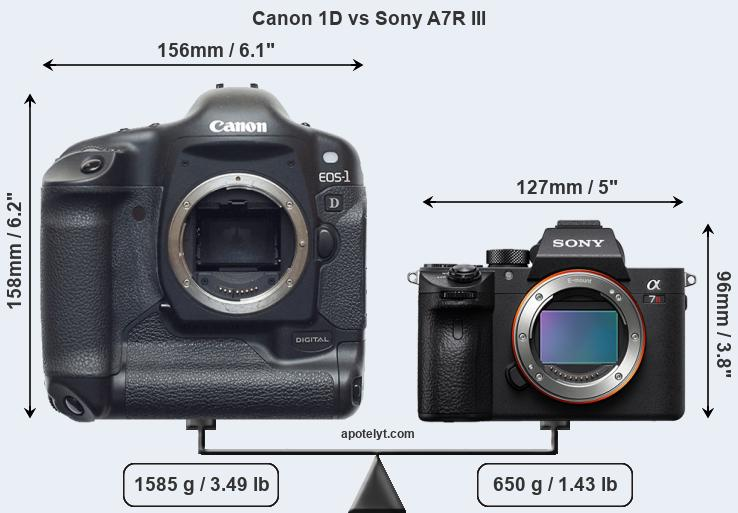 Compare Canon 1D and Sony A7R III