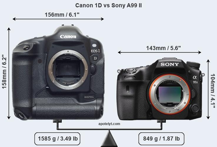 Size Canon 1D vs Sony A99 II