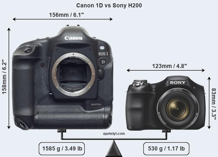 Size Canon 1D vs Sony H200