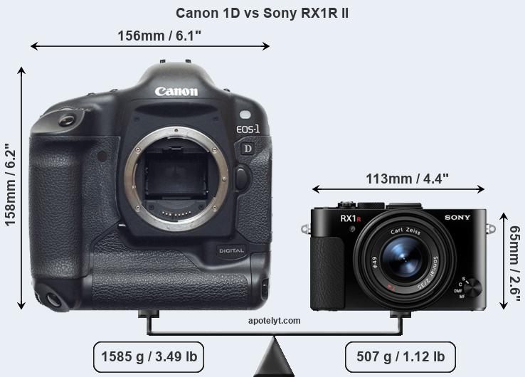 Size Canon 1D vs Sony RX1R II
