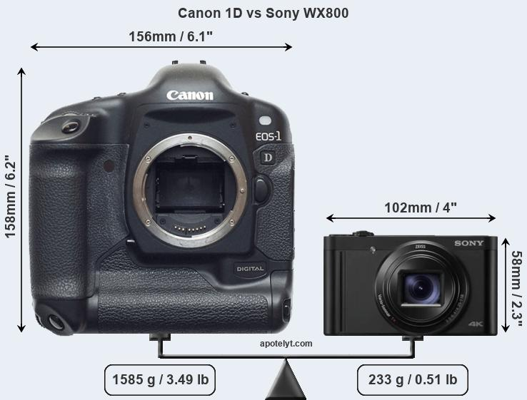 Size Canon 1D vs Sony WX800